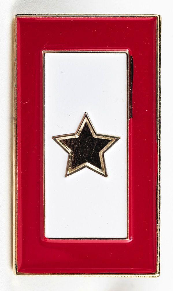 Patriotic GOLD STAR SERVICE FLAG LAPEL TAC PIN - The Store at LBJ