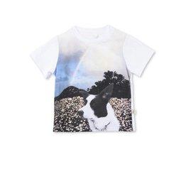 STELLA MCCARTNEY Stella McCartney baby graphic tshirt