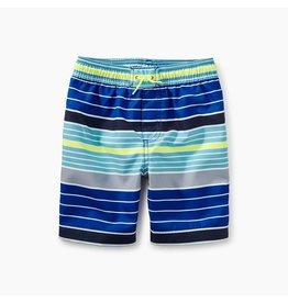 Tea Collection Swim Trunks - Multi Stripe