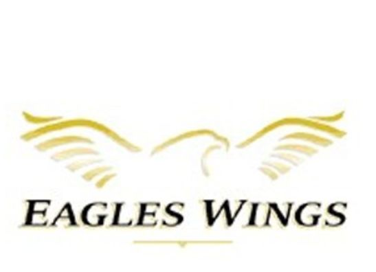Eagles Wings Neck Tie