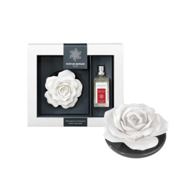 Rose sur plateau Parfum Berger Zeste de Verveine