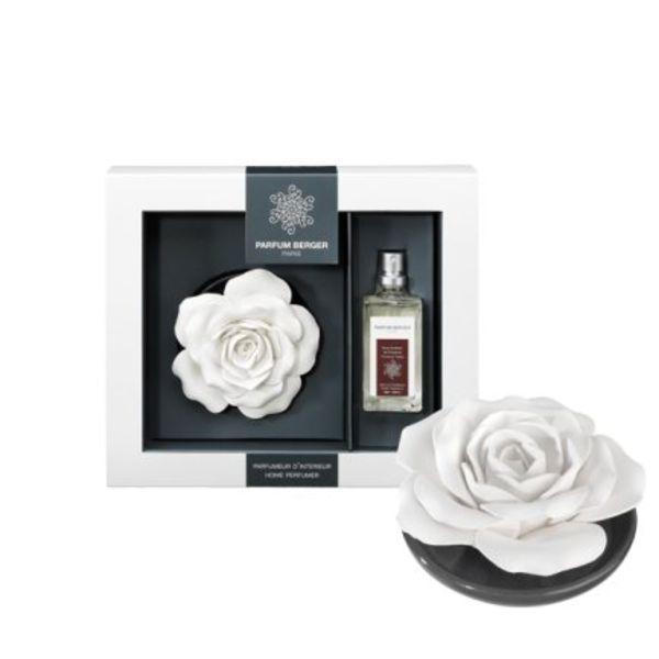 Rose sur plateau Parfum Berger Gourmandises de Provence