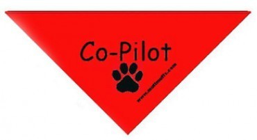 Co-Pilot Triangle Bandana
