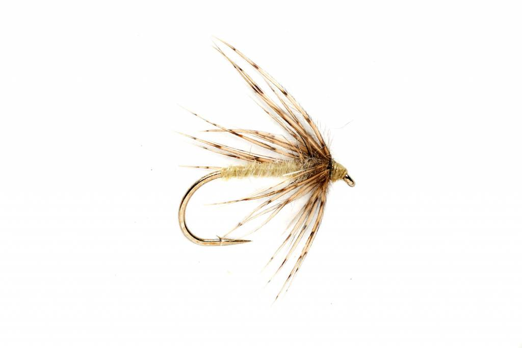 Soft Hackle Spider Caddis - Tan/Yellow #14