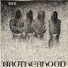 Taang! Records DYS - Brotherhood LP