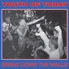 Revelation Records Youth Of Today ‎– Break Down The Walls LP