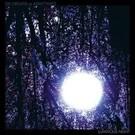 Drag City Six Organs Of Admittance – Luminous Night LP