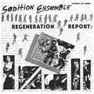 Sol Re Sol Records Sedition Ensemble – Regeneration Report LP