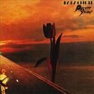 Pretty Things - Parachute LP