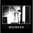 4AD Bauhaus - In The Flat Field LP