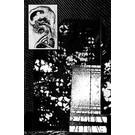 Fieldwork V/A - Rotten Contingent CS