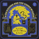King Gizzard And The Lizard Wizard - Flying Microtonal Banana LP