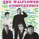 Vinilisssimo Walflower Complextion, The - S/T LP