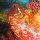 Earache Morbid Angel - Blessed Are the Sick LP