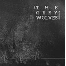 Tesco Grey Wolves, The - Exit Strategy LP