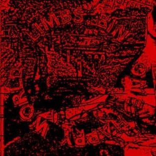 Torn Light Limbs Bin - One Happy World LP