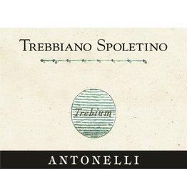 "Italian Wine Antonelli Trebbiano Spolentino ""Trebuim"" Umbria Bianco 2013 750ml"