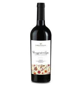 """Italian Wine Gabriele Scaglione """"Passeggiando in Vigne"""" Langhe Nebbiolo 2014 750ml"""