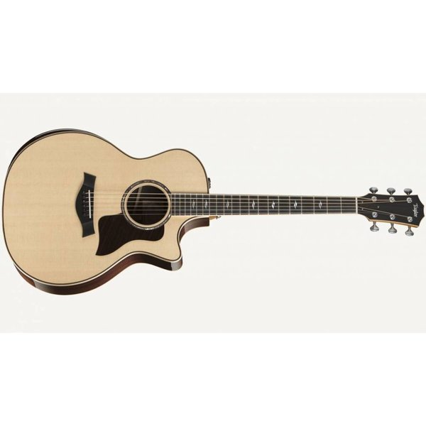 Taylor 814ce DLX with hard case