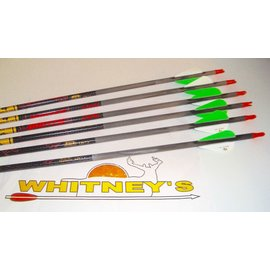 Gold Tip Gold Tip Hunter 500 Spine HUN500A2