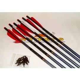"""TenPoint TenPoint 2219 20"""" XX75 Aluminum Arrows 6-PK W/Omni-Nocks-HEA-002.6"""