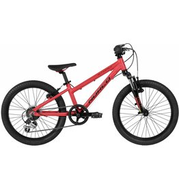 "Norco Norco Storm 2.2 A 20""  RED"