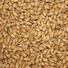 Great Western Malting Great Western 2-Row Premium Malt - 55 LB
