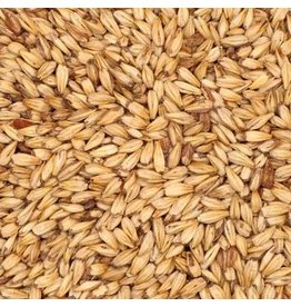 Great Western Malting Great Western Munich Malt - 50 LB