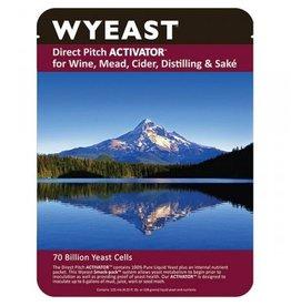 Wyeast Laboratories 4242 Fruity White
