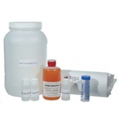 Chromatography Test Kit -Vertical