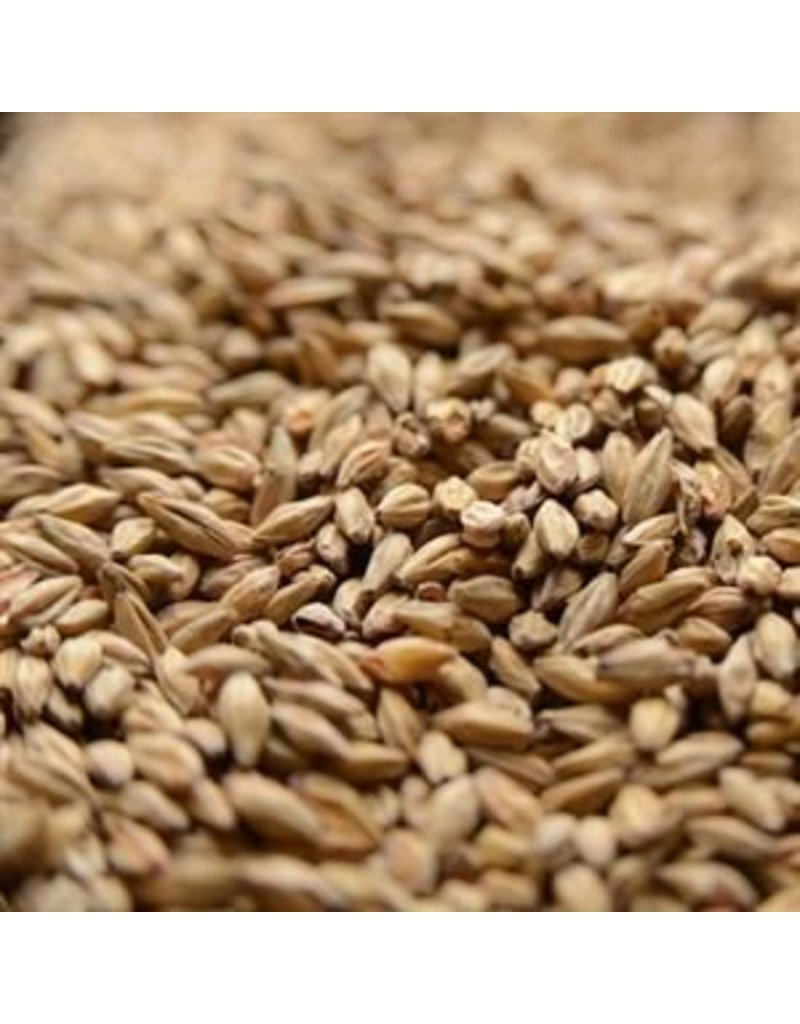 Gambrinus Malting 1 LB. Honey Malt, Gambrinus