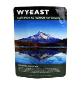 Wyeast Laboratories 3822 PC - Belgian Dark Ale