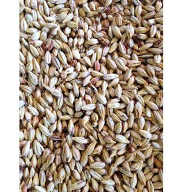 Great Western Malting Sacchra 50 Malt, Great Western Malting, 50lb.