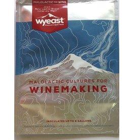 Wyeast Laboratories 4007 Malolactic Blend