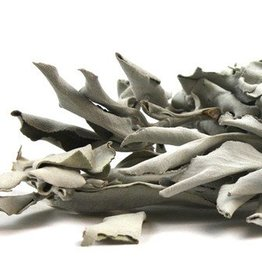White Sage whole  8oz