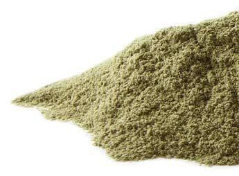 Shavegrass CO powder 16 oz