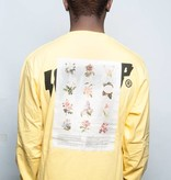 10 Deep 10 Deep Thinking of You LS  Yellow