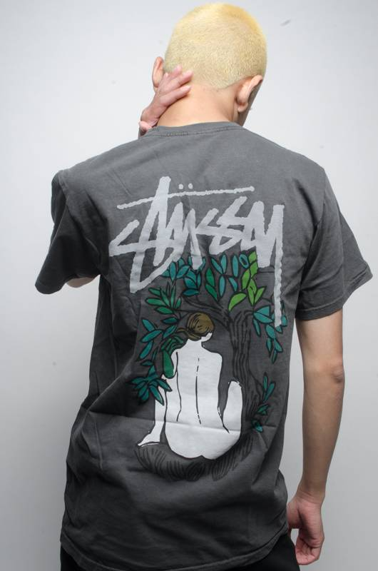 Stussy Stussy FORCES OF NATURE TEE Black
