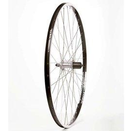 Wheel Shop Wheel Shop, Rear 700C Wheel, 36H Black Alloy Double Wall Alex DM-18/ Silver Shimano FH-RM70 QR 8-10spd Hub, Stainless Spokes