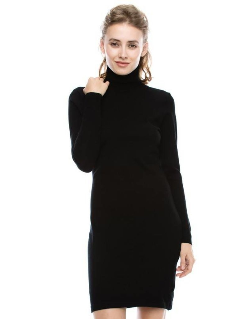 Illusion Turtleneck Dress