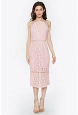Maelynn Lace Bodycon Dress