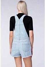 Light Blue Dressed Overalls