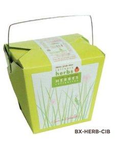 Boîte Mano Verde Ciboulette/ Chives Box