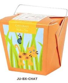 Boîte Mano Verde Herbe à Chat/ Catgrass Box