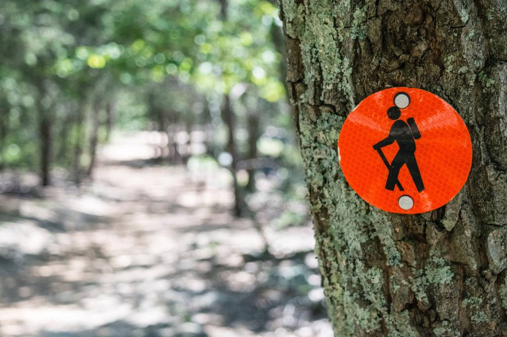 Staff Favorite – Hiking
