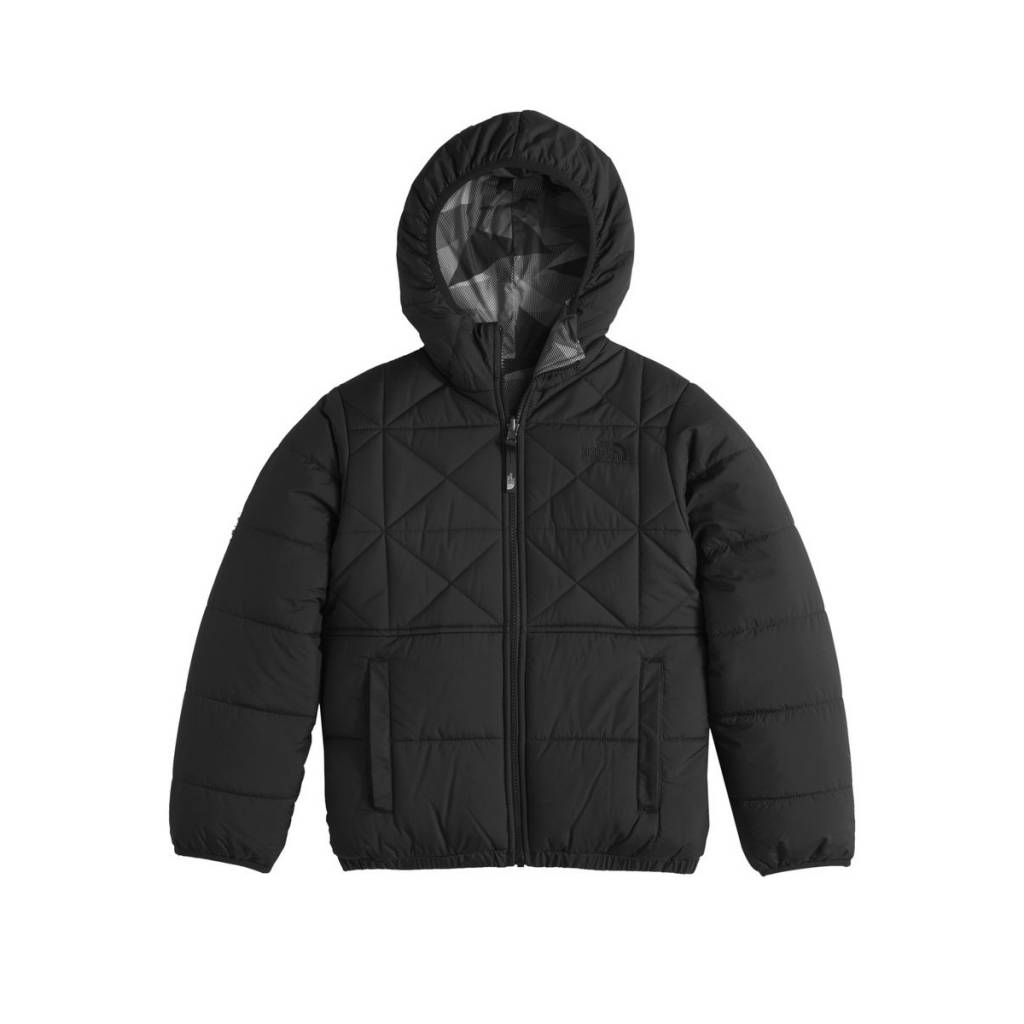 toddler north face