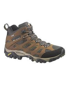 Men's Moab Mid GTX
