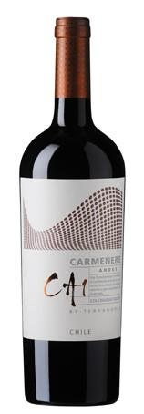 Terranoble CA1  Carmenere Andes