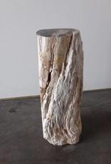 Petrified Fireplace Wood
