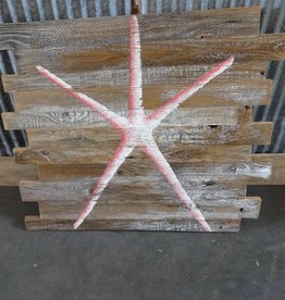 Starfish on Barn Board